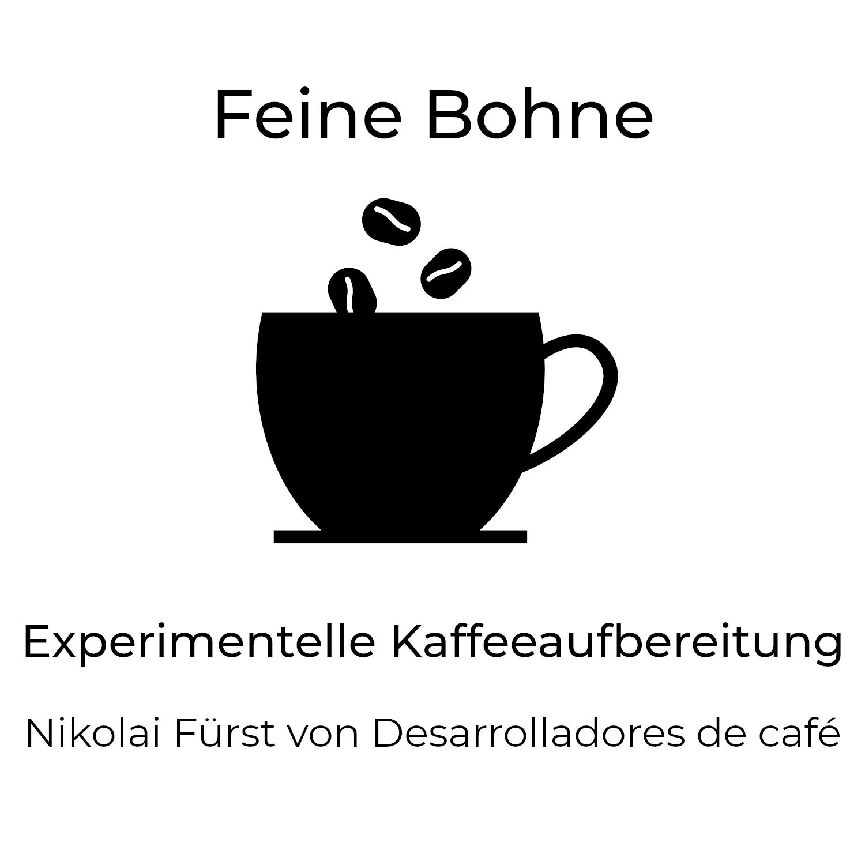 #7 Experimentelle Kaffeeaufbereitung | Nikolai Fürst von Desarrolladores de café